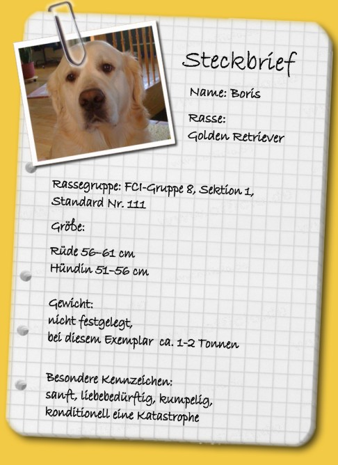 Steckbrief Hund 5. Klasse